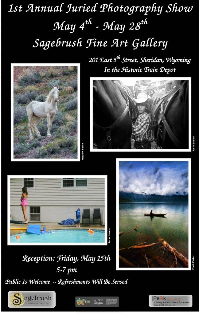 First Juried Photography Poster May 2015